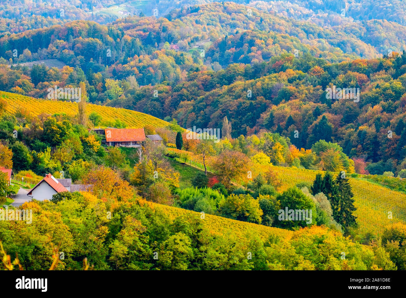 Beautiful Autumn Hillside Landscape In Slovenia Close To The