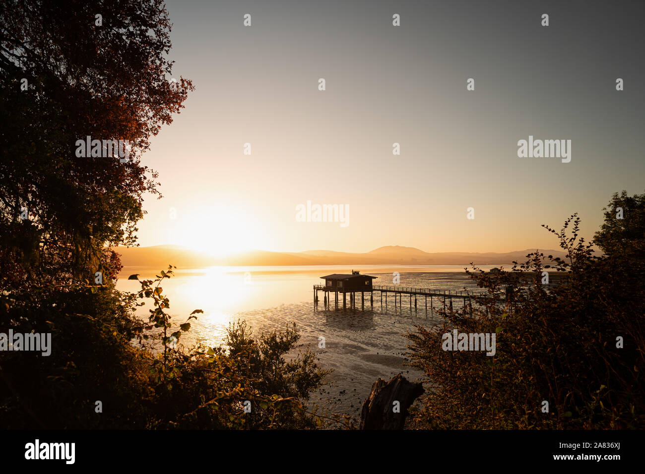 Sunrise at a Pier in Point Reyes Stock Photo