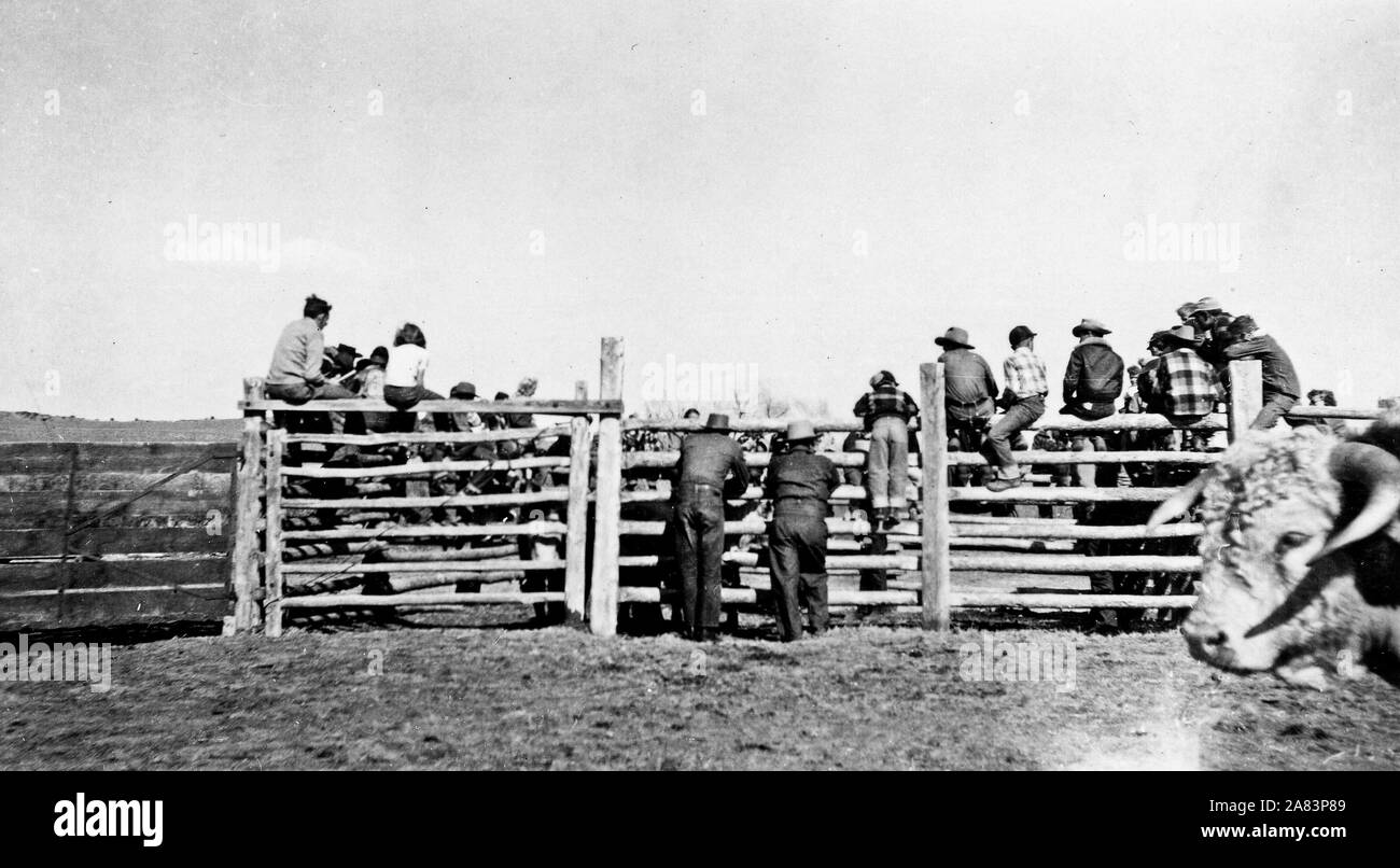 Cowboys Sitting On Fence High Resolution Stock Photography And Images Alamy