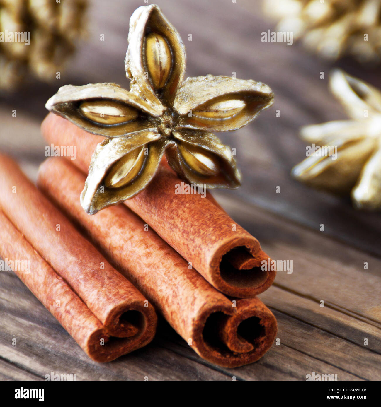 Christmas decoration with cinnamon and golden aniseed close up Stock Photo