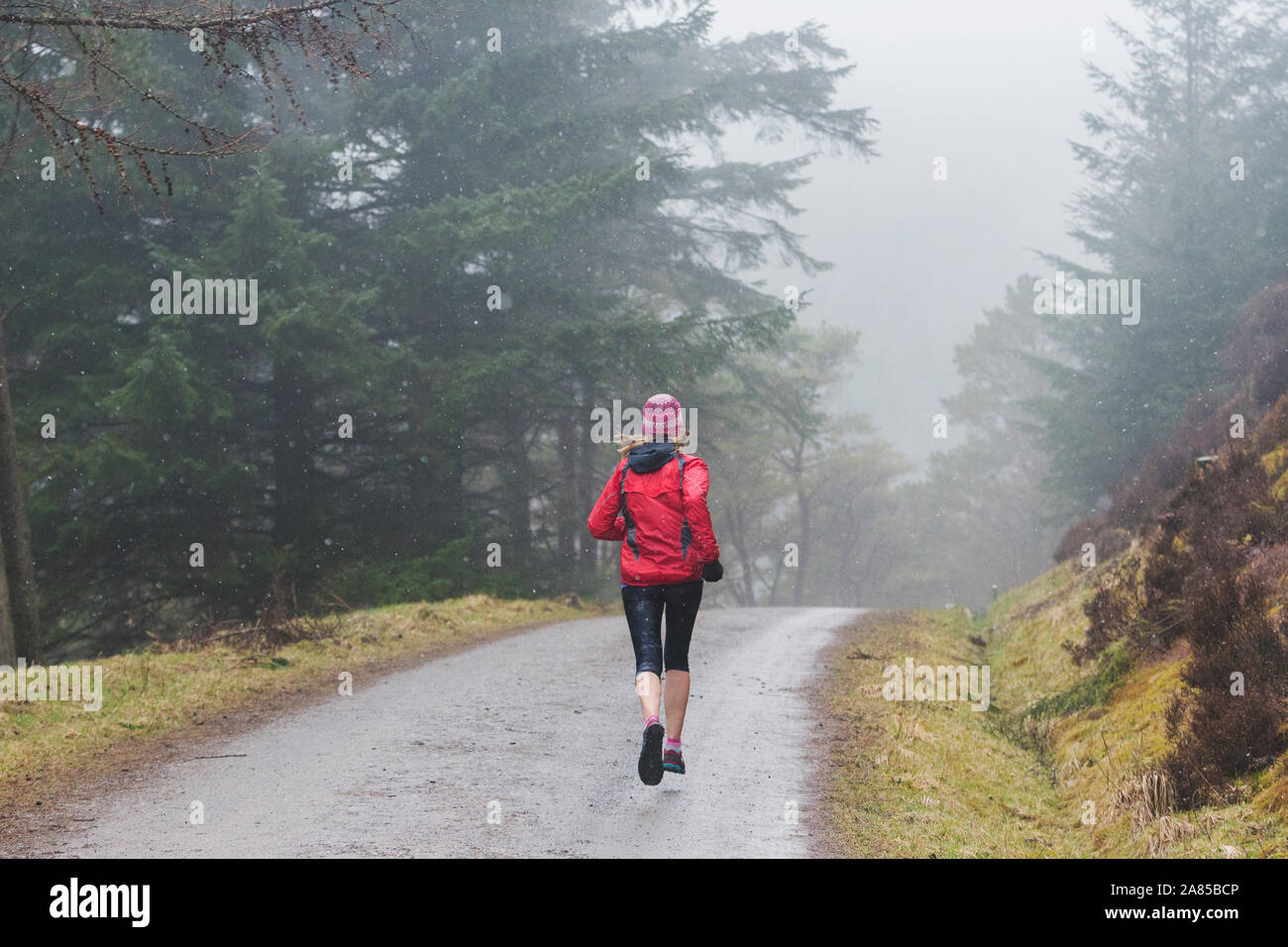 Woman jogging on trail in rainy woods Stock Photo
