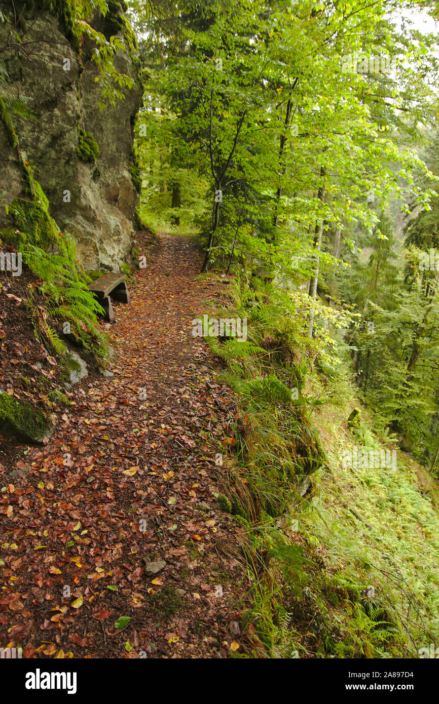 Path in Wehraschlucht, Bannwald,  autumn, Black Forest, Germany Stock Photo