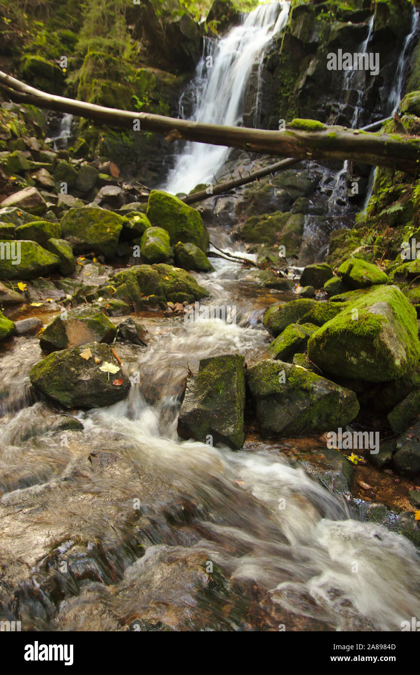 Windsbergschlucht with waterfall, near St. Blasien,  autumn, Black Forest, Germany Stock Photo