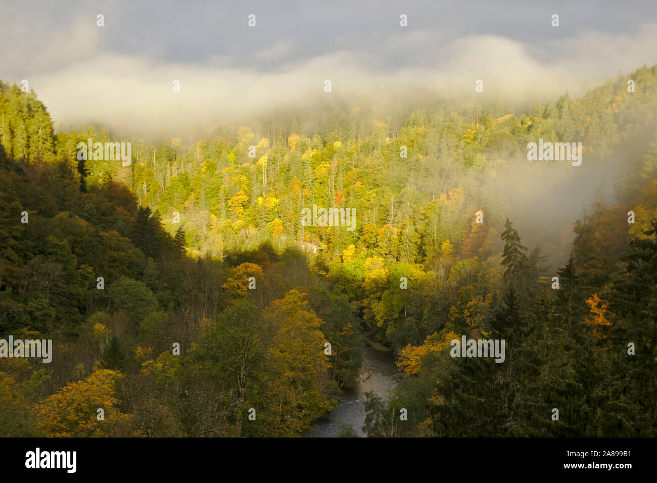 View into Wutachschlucht (Wutach canyon),  autumn, Black Forest, Germany Stock Photo