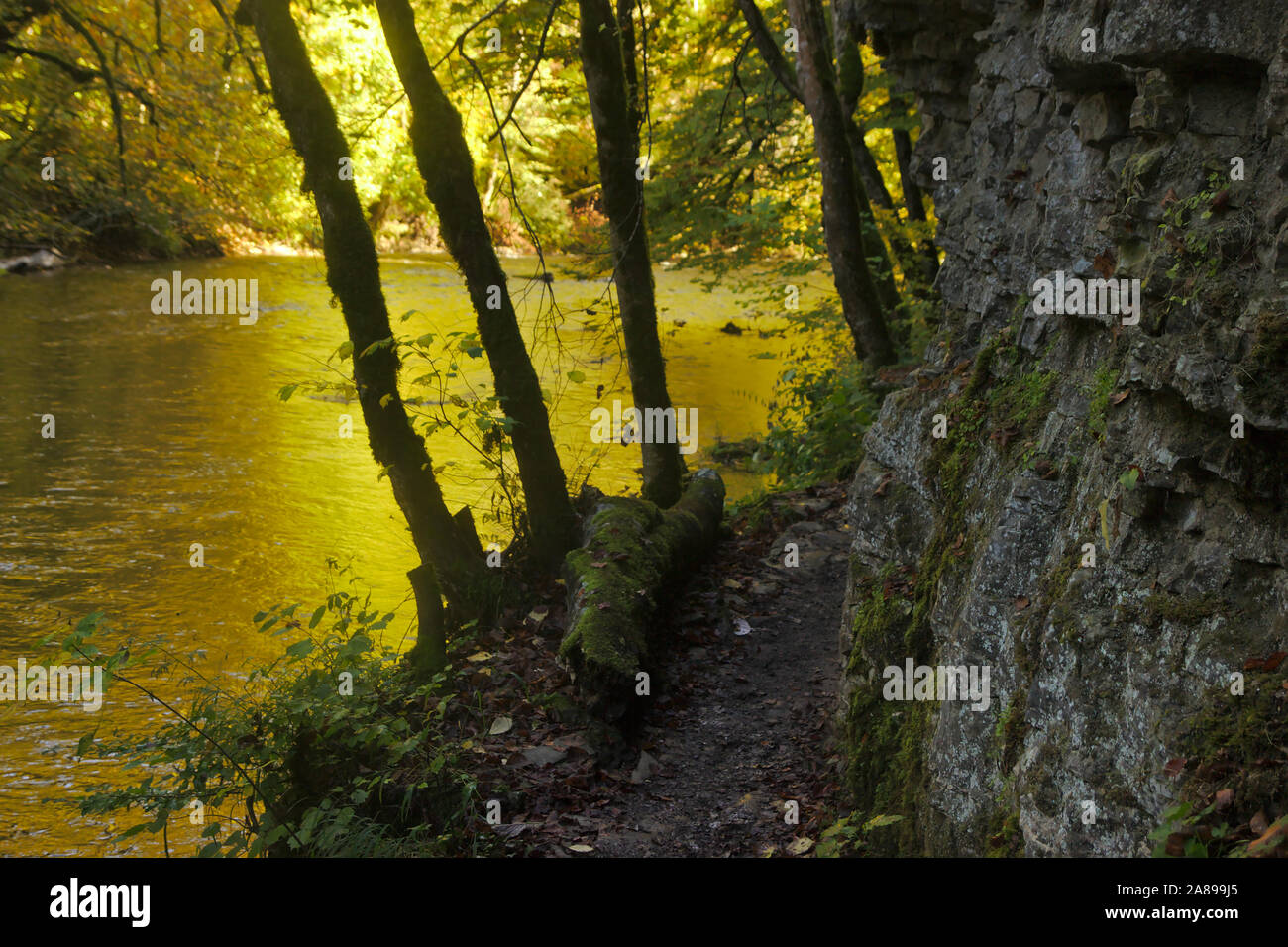 Magic light in Wutachschlucht (Wutach canyon),  autumn, Black Forest, Germany Stock Photo