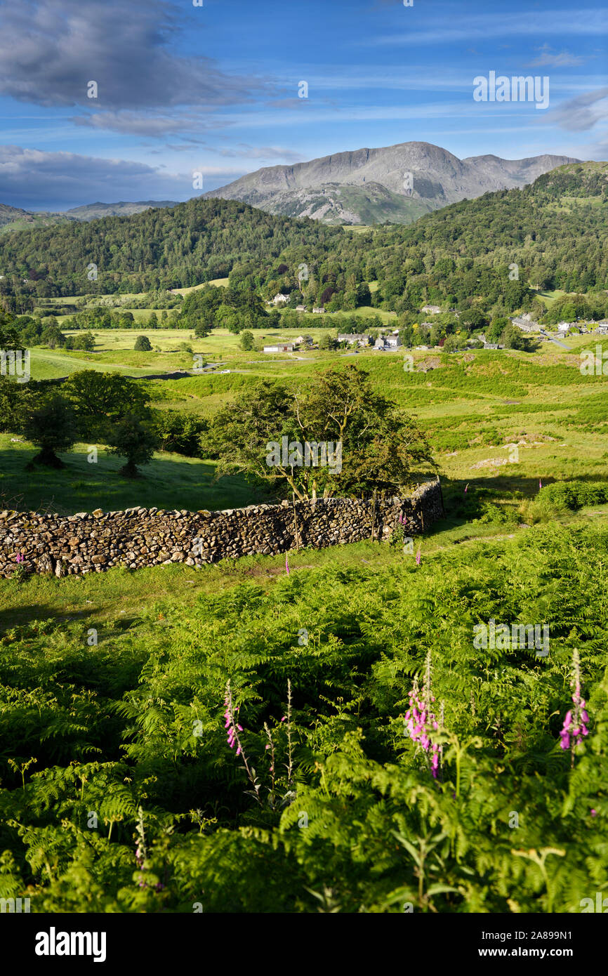 Elterwater village and Wetherlam and Great Carrs Peaks Cumbrian mountains with drystone fence and bracken in Lake District England Stock Photo