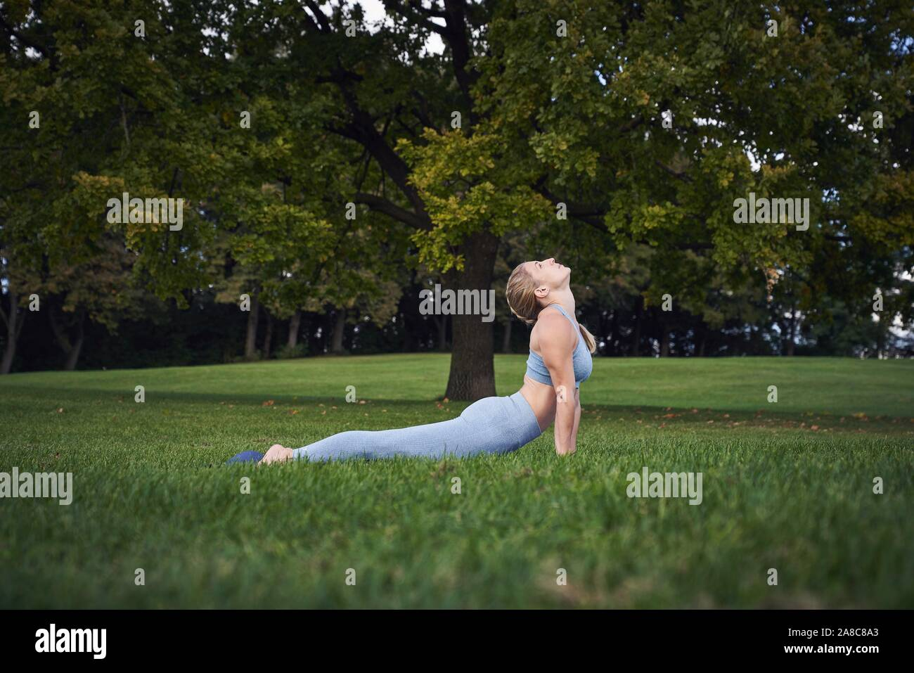 Young woman doing yoga in the park, gymnastics, Olympiapark, Munich, Germany Stock Photo