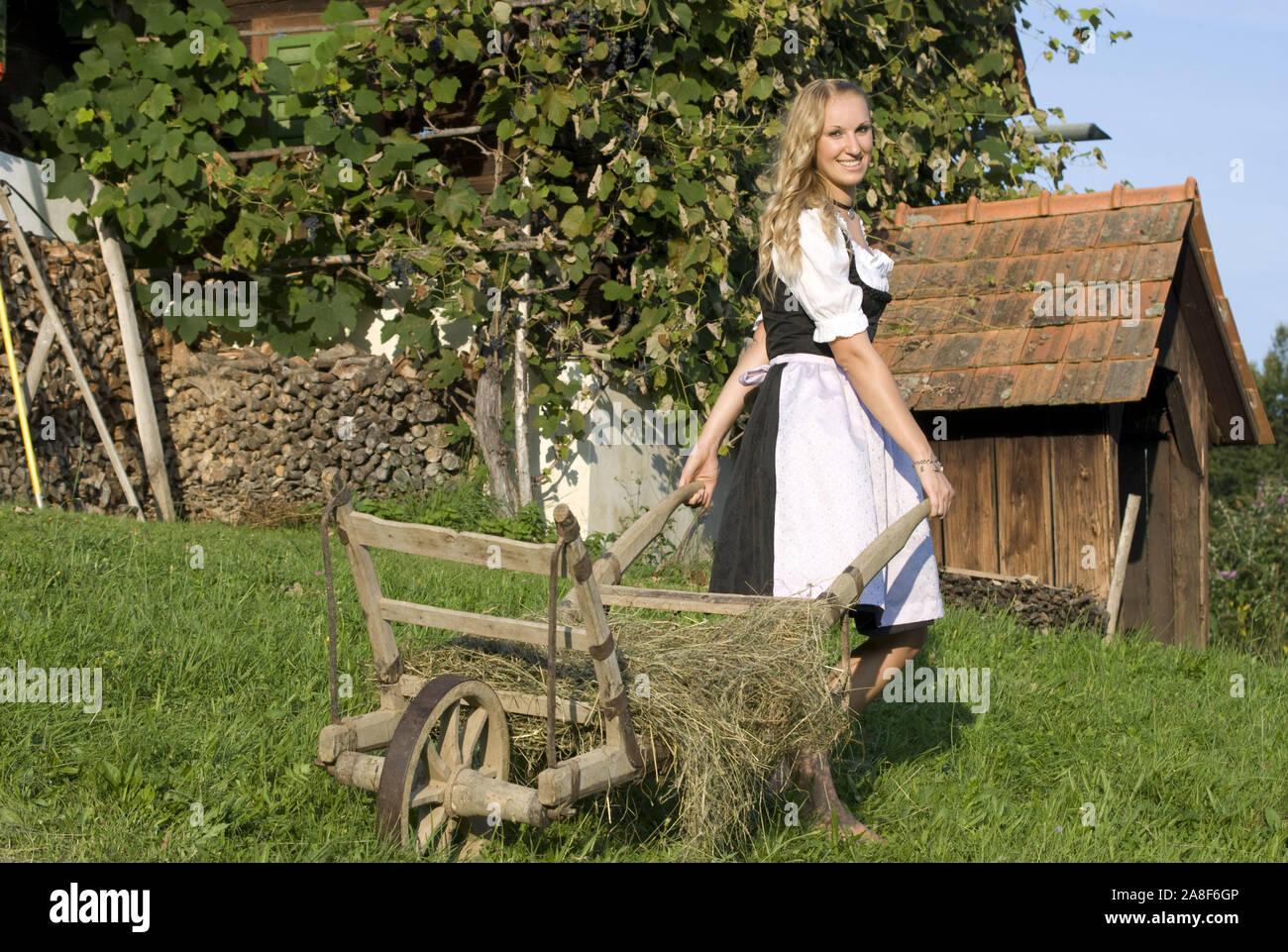 Blonde junge rau im Dirndl, mit Schubkarre, fährt Heu, 25, 30, MR:Yes Stock Photo