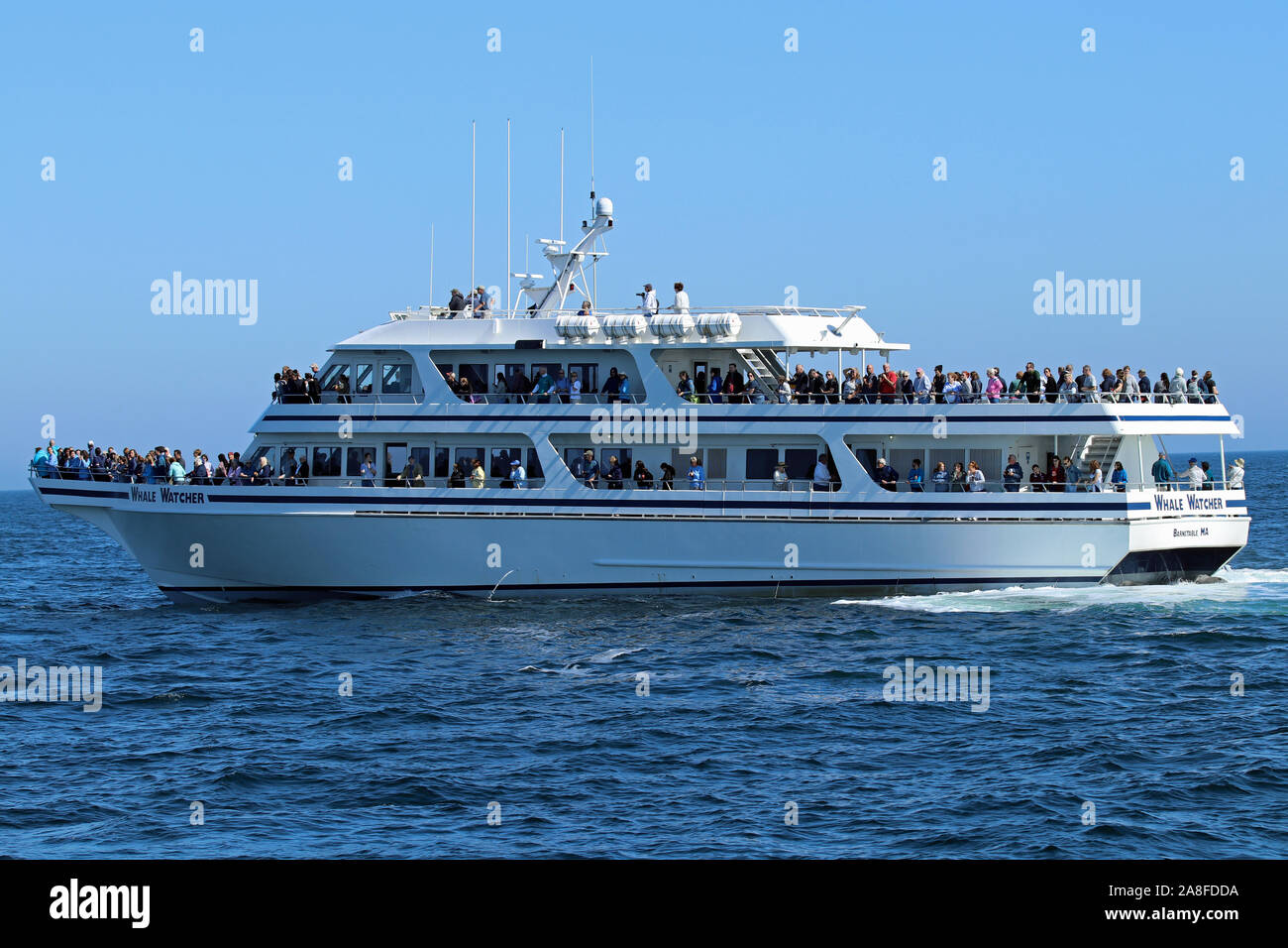 The Whale Watcher, a whale watching cruise out of Barnstable, Massachusetts Stock Photo
