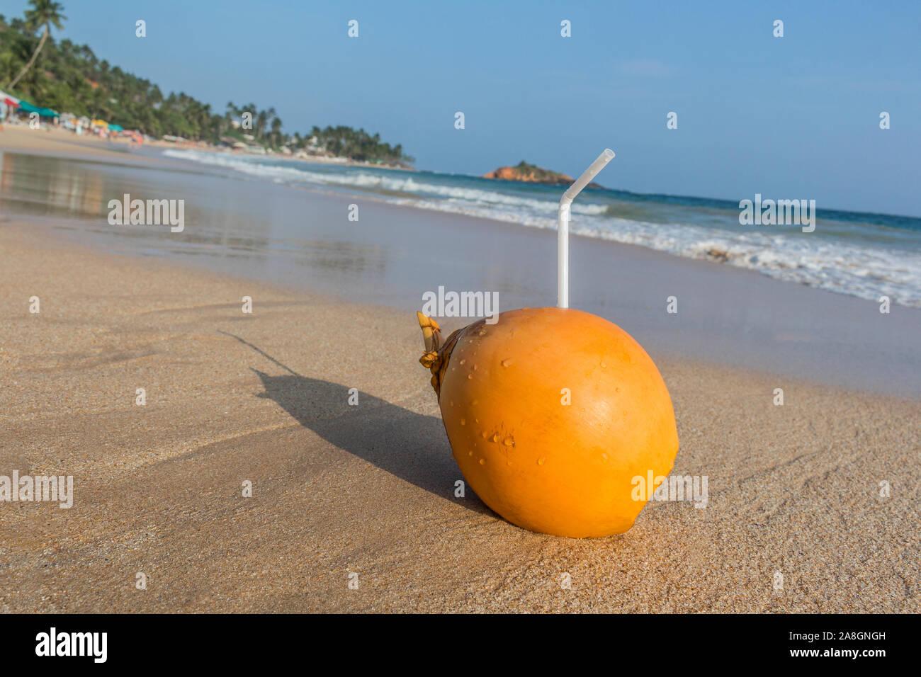 Coconut with drinking straw. Mirissa Beach in beautiful Island Sri Lanka. Stock Photo