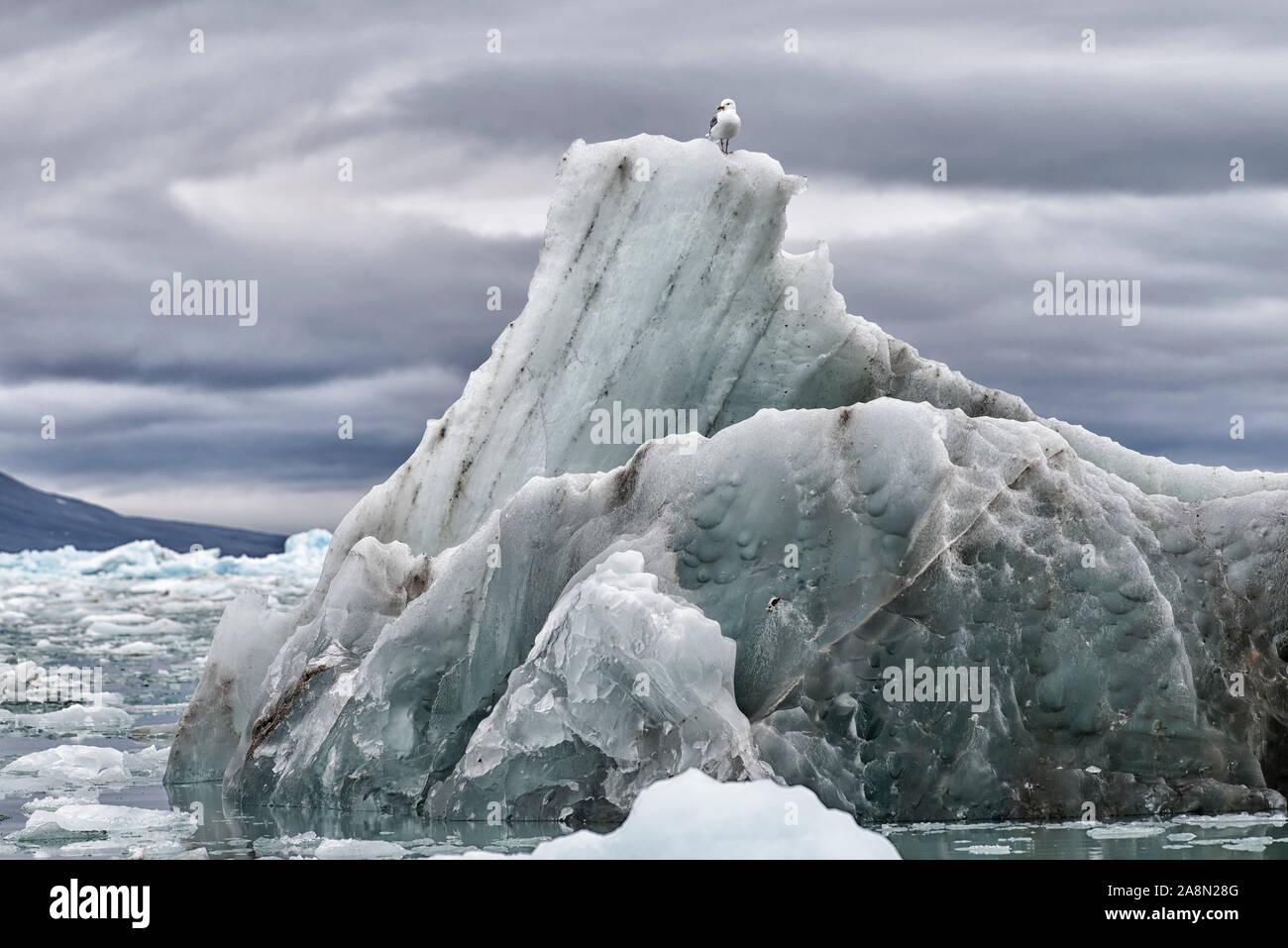 Abgebrochenes Eis des Monacobreen im arktischen Ozean, Haakon-VII-Land, Svalbard. Just broken off part of Monacobreen floating in the arctic ocean. Stock Photo