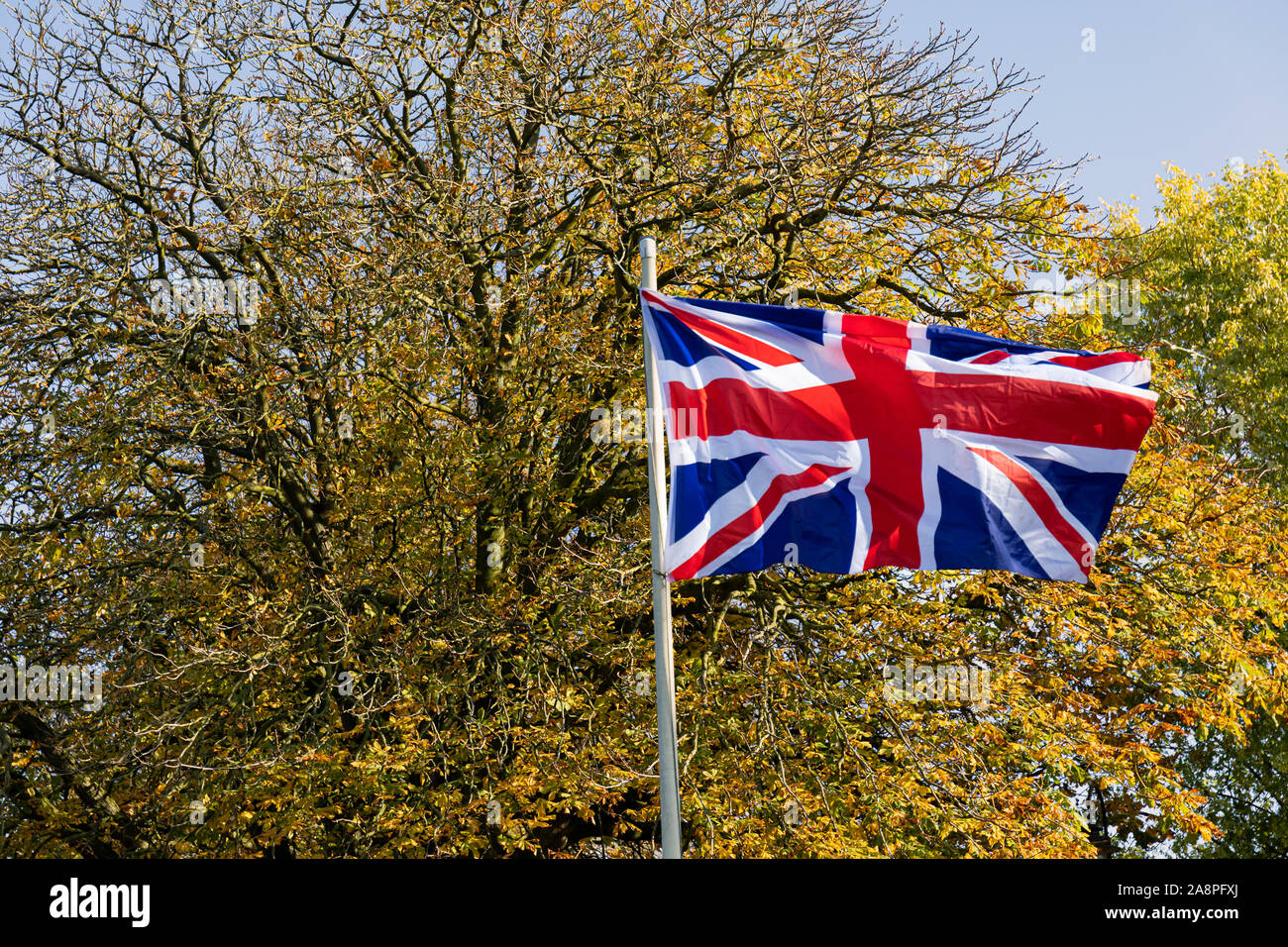 Union Jack flag blowing in the wind during Trowbridge Remembrance Sunday Service, 10th November 2019, in Trowbridge Park, Wiltshire UK Stock Photo