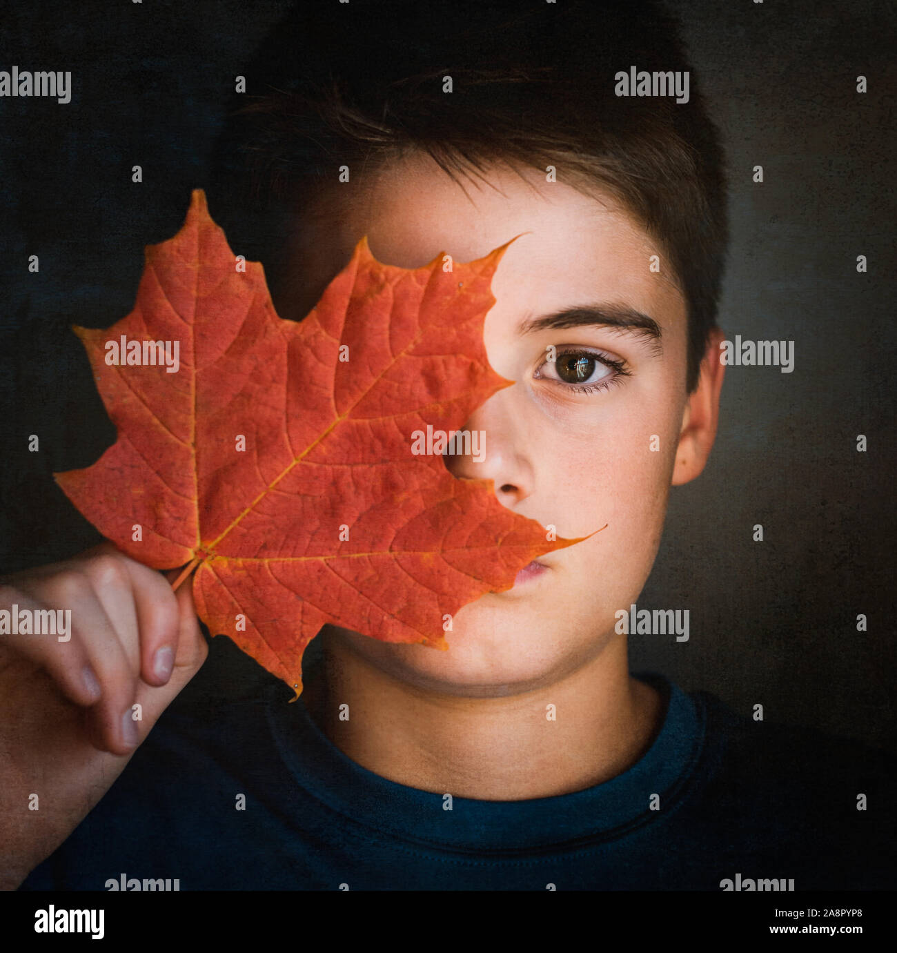 Close up portrait of boy covering half of his face with a maple leaf. Stock Photo