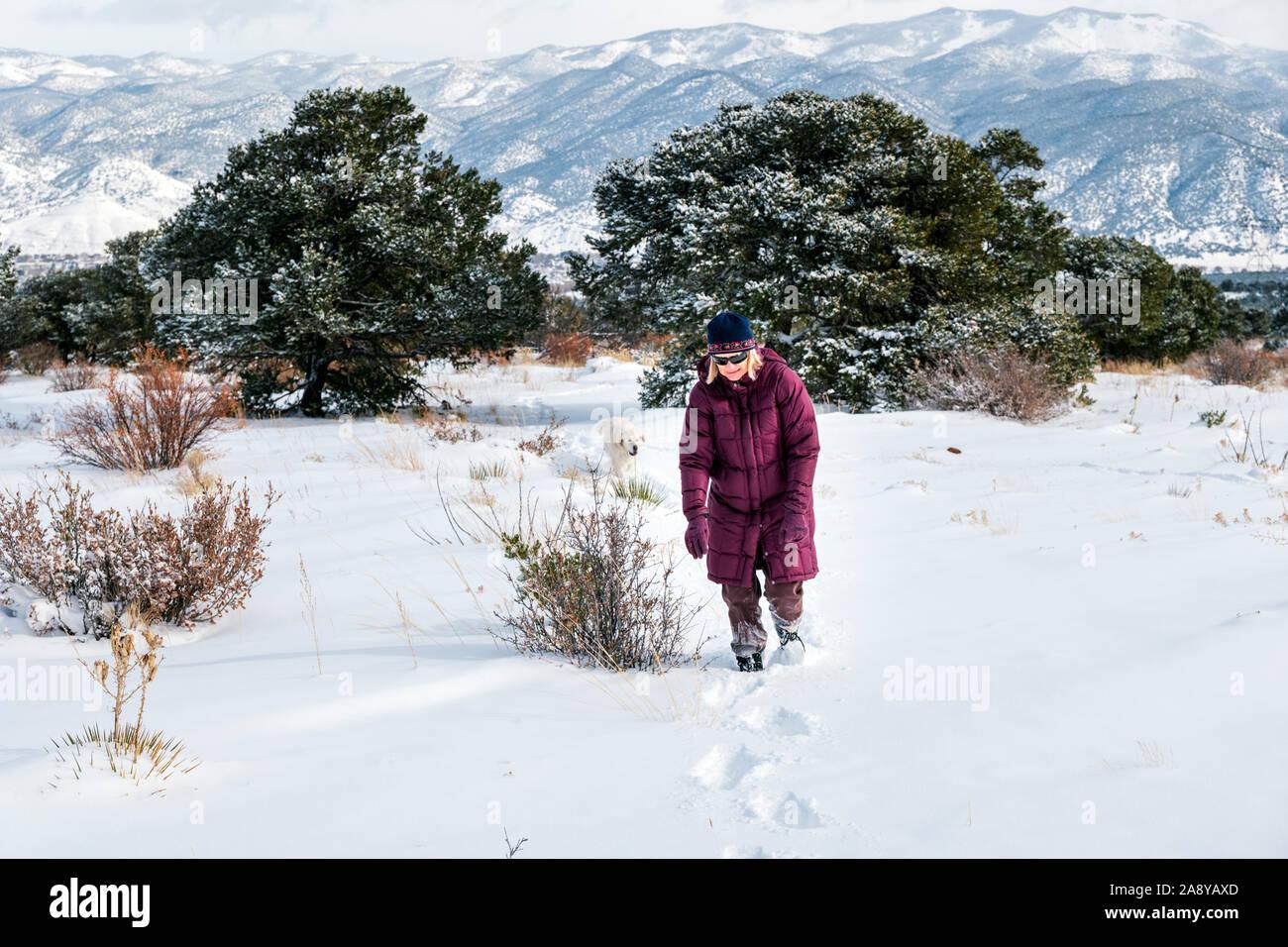 Woman hiking with platinum colored Golden Retriever dog in fresh snow near Salida; Colorado; USA Stock Photo