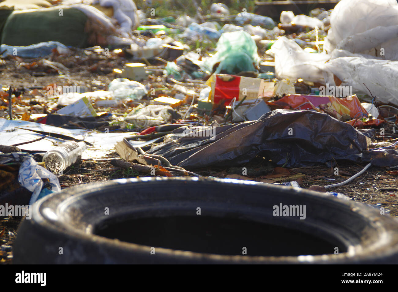 Heap of plastic garbage in the forest. Environmental protection concept. Stock Photo