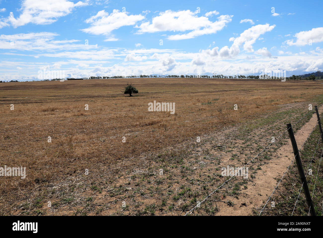 Farmland in the Paardeberg area, Windmeul near Paarl in the Western Cape Province of South Africa. Stock Photo