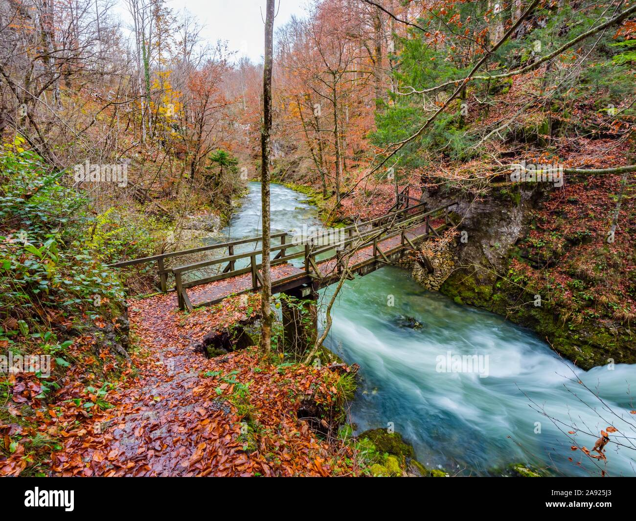 Famous landmark wooden bridge footbridge Kamacnik canyon near Vrbovsko in Croatia Europe Stock Photo
