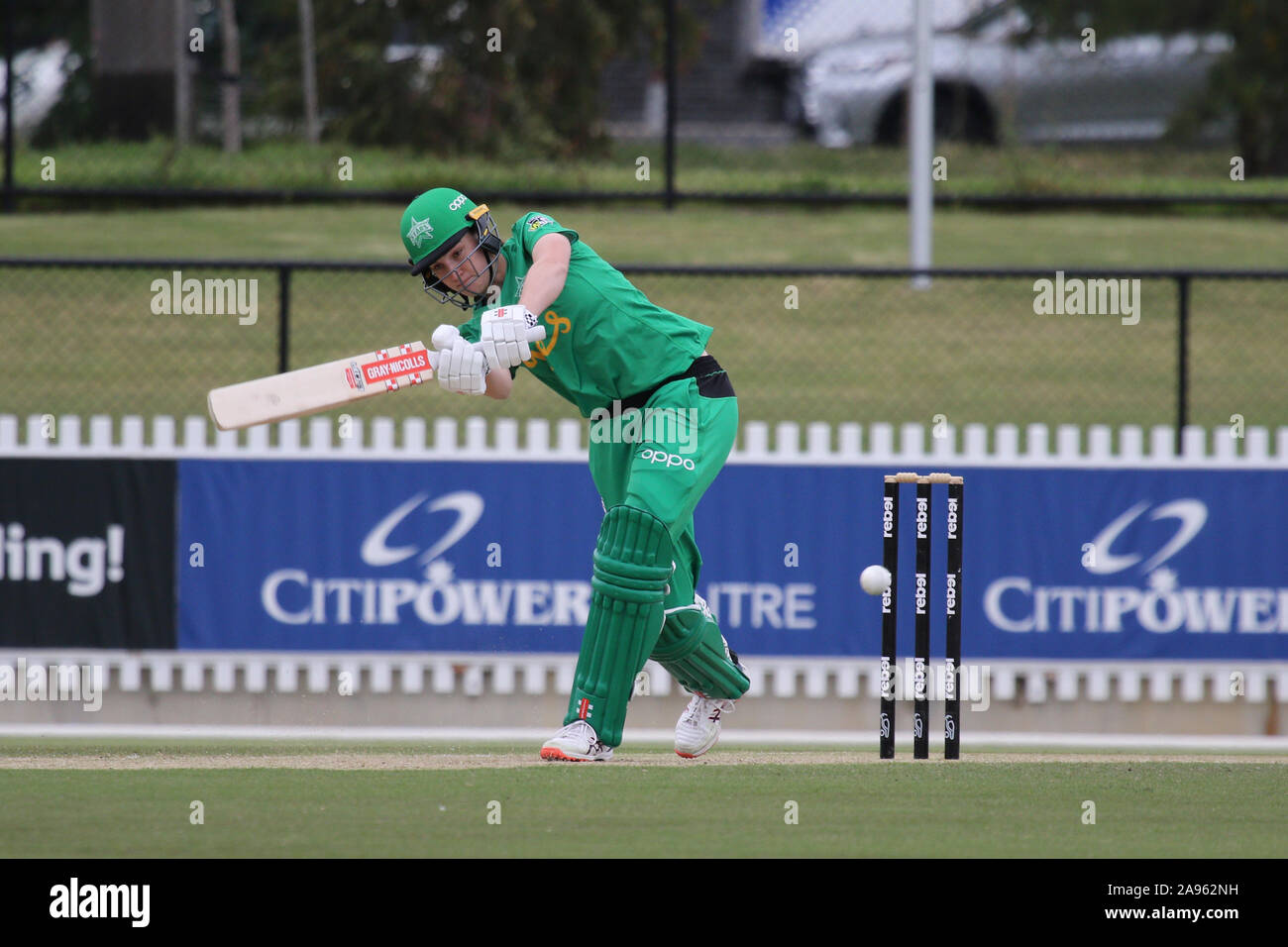 Junction Oval Victoria Australia 13 November 2019 Rebel Womens Bblseason 5 Game 32 Melbourne Stars Women