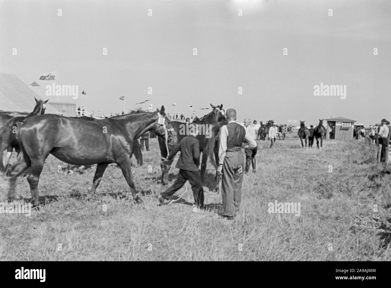 Rgeional custom: Duhner Wattrennen horserace at Duhnen near Cuxhaven, Germany 1930s. Stock Photo