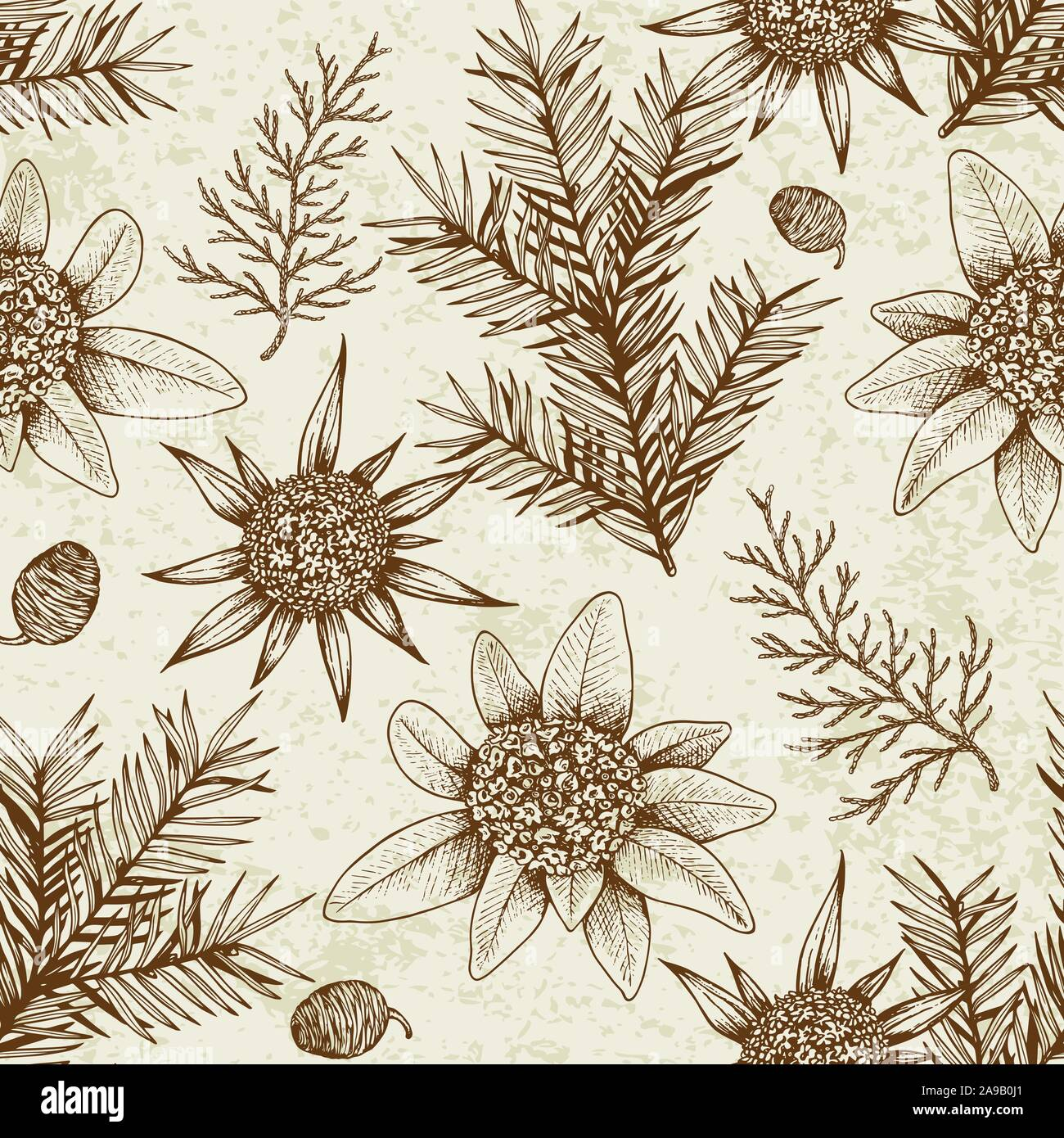 Vintage Winter Seamless Pattern With Evergreen Plants And Flowers Decorative Background For Christmas And New Year Hand Drawn Vector Pattern Stock Vector Image Art Alamy