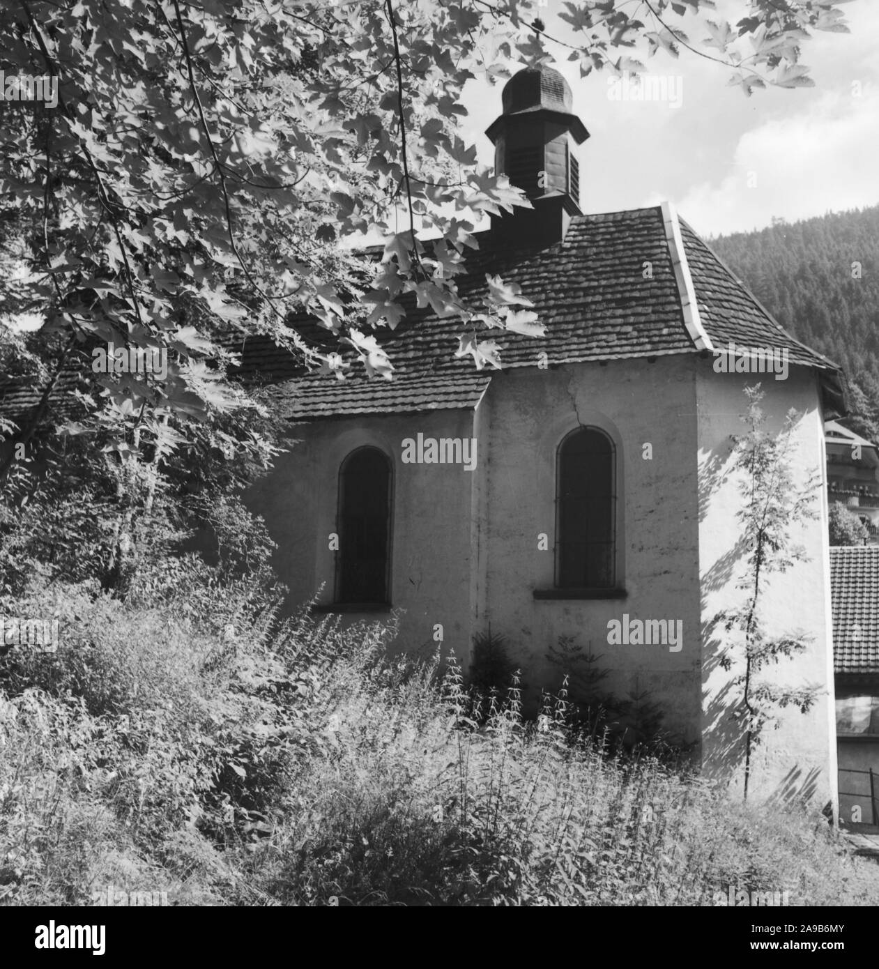 Summer in the Black Forest, Germany 1930s. Stock Photo