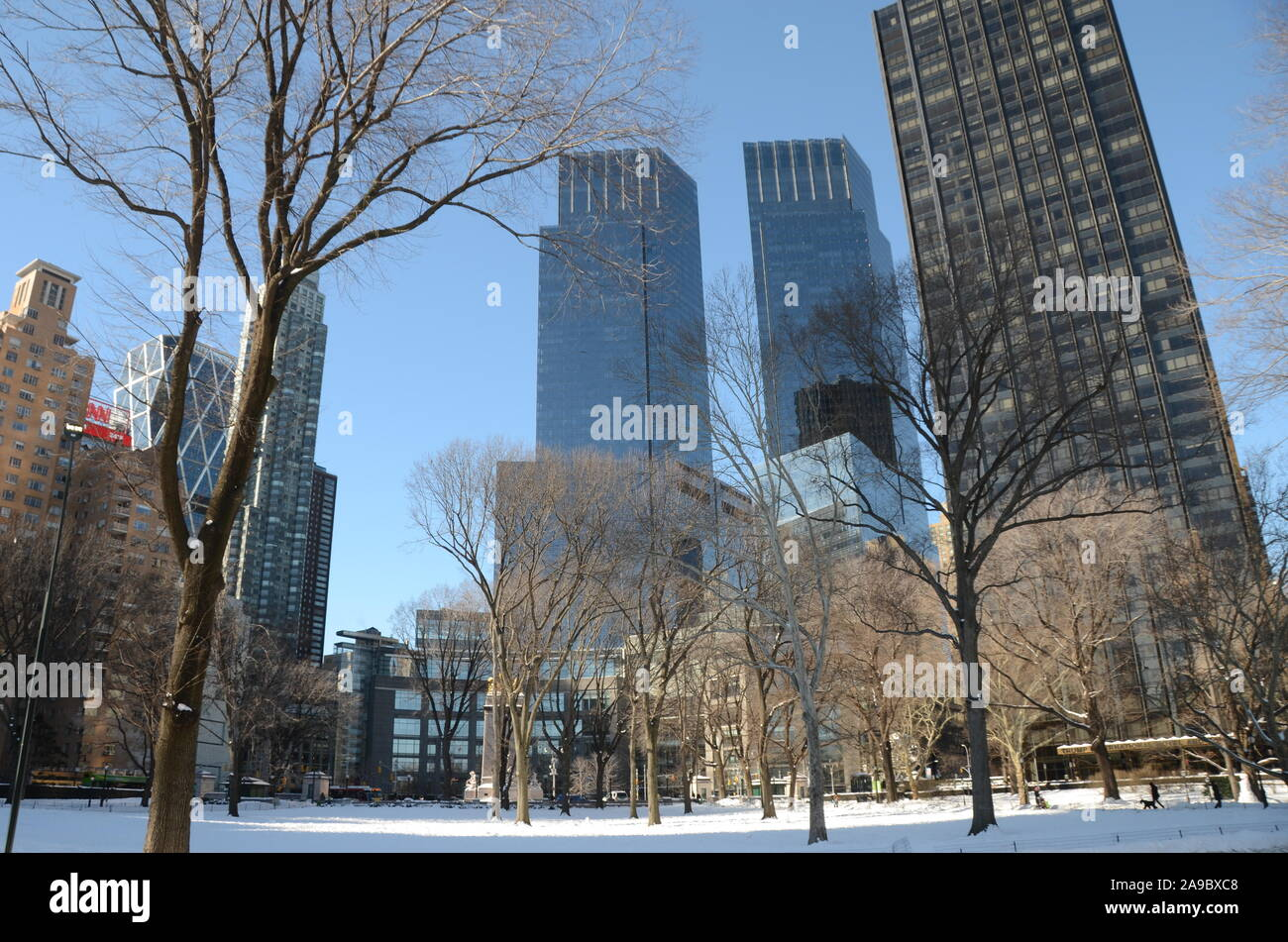 Central Park in winter, Manhattan. NYC, USA. Stock Photo
