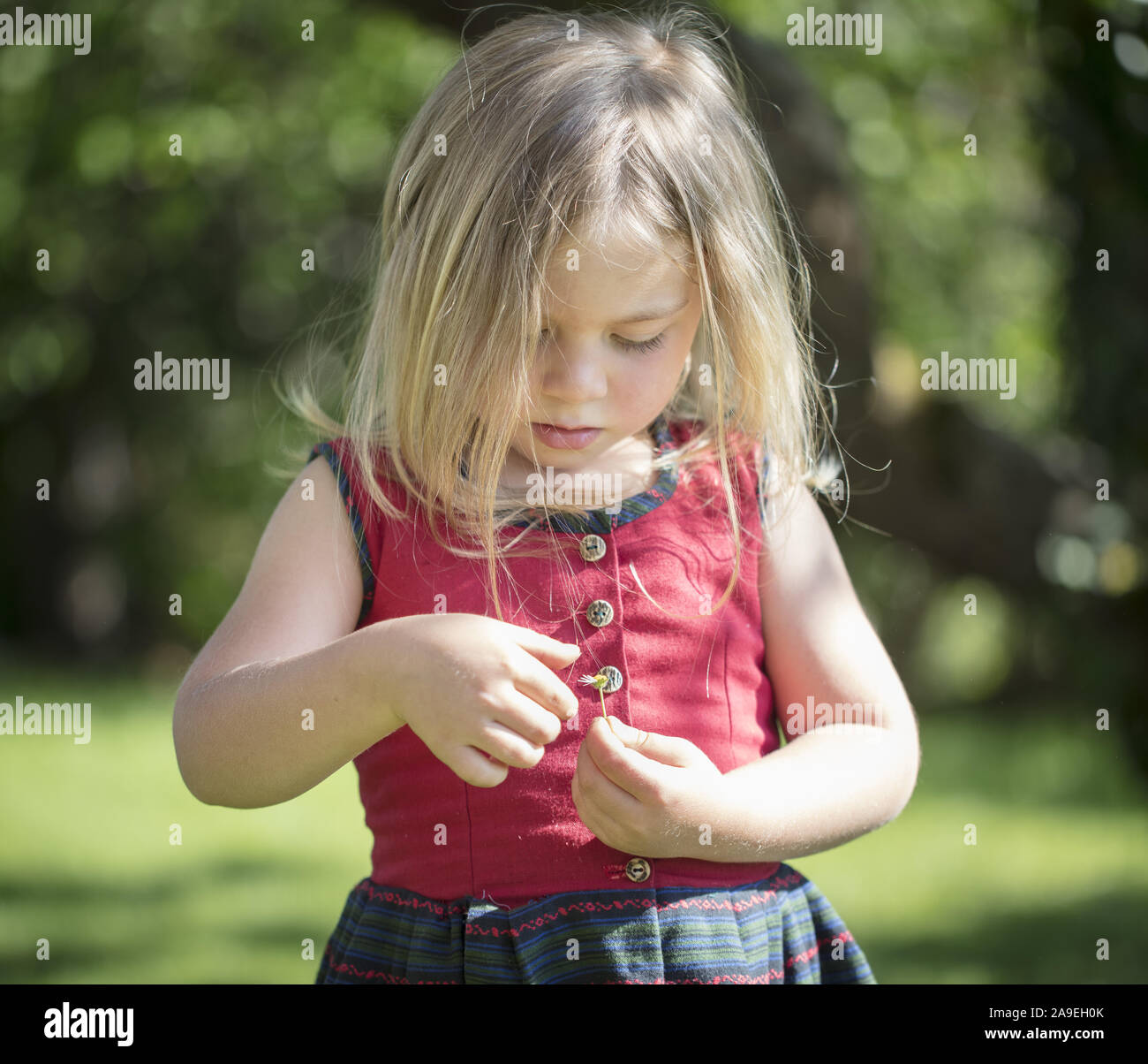 Child playing with daisies Stock Photo