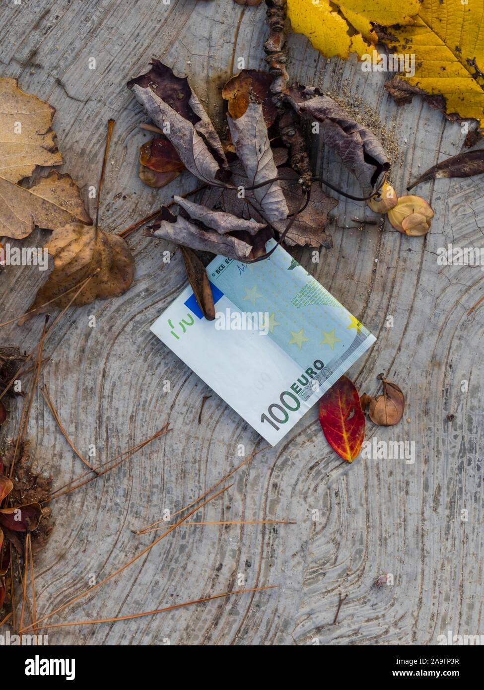 Lost and found money Stock Photo