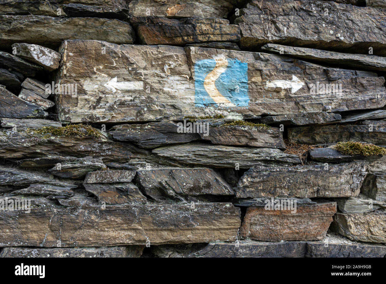 symbol of rheinsteig hiking trail in the middle rhine valley, germany Stock Photo
