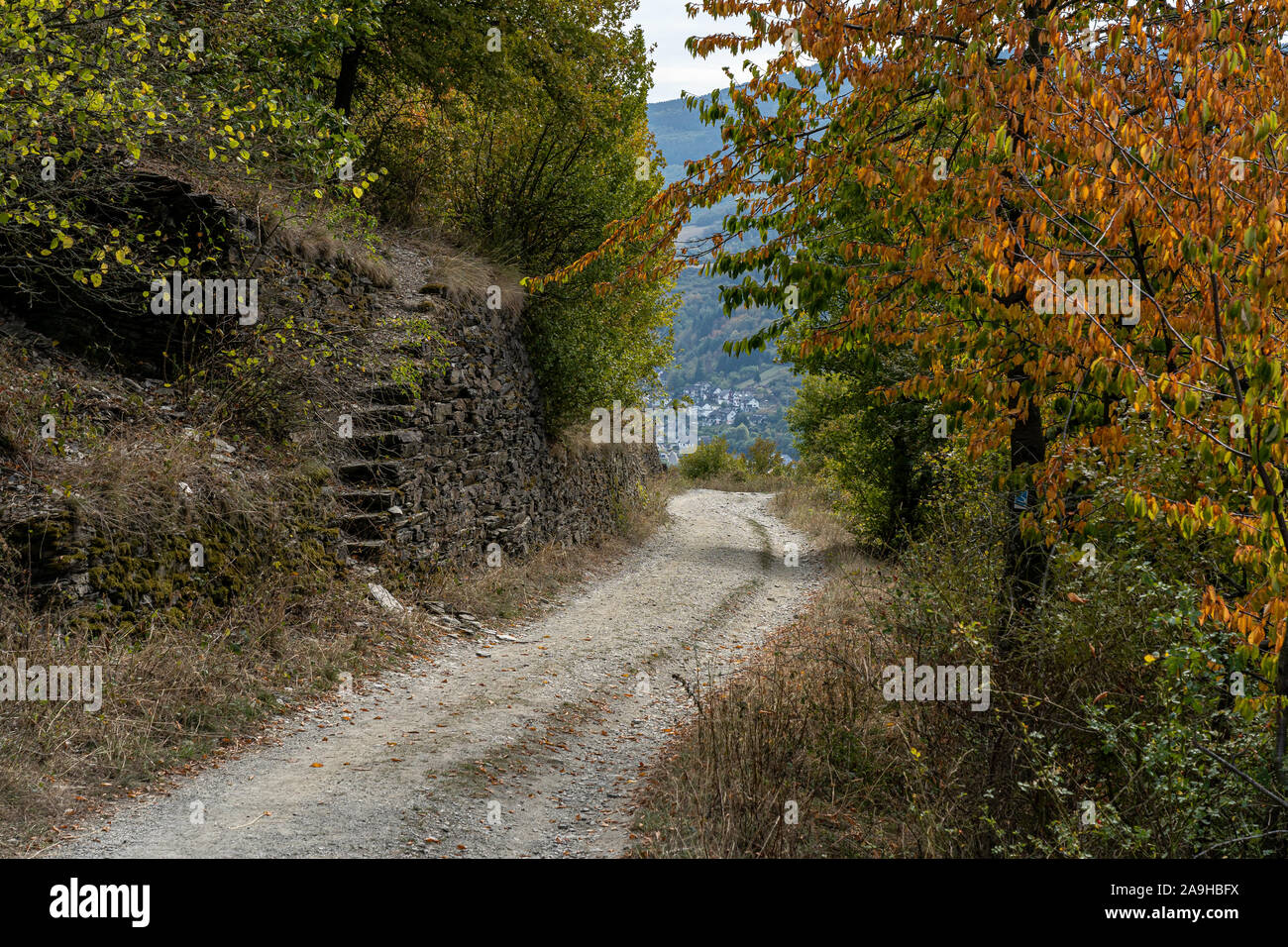 hiking on rheinsteig trail in the middle rhine valley, germany Stock Photo