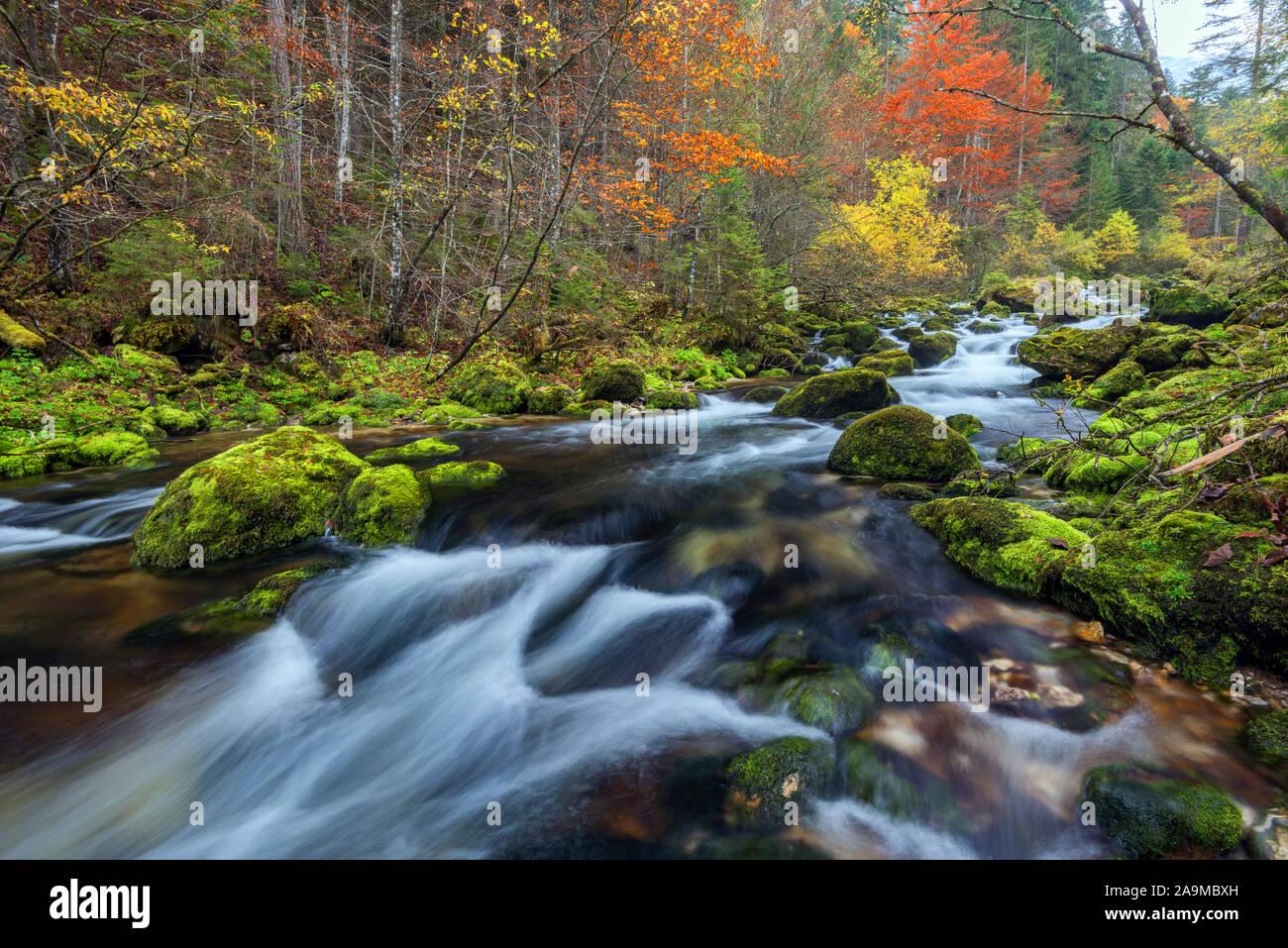 Wildbach, Norwegen Stock Photo