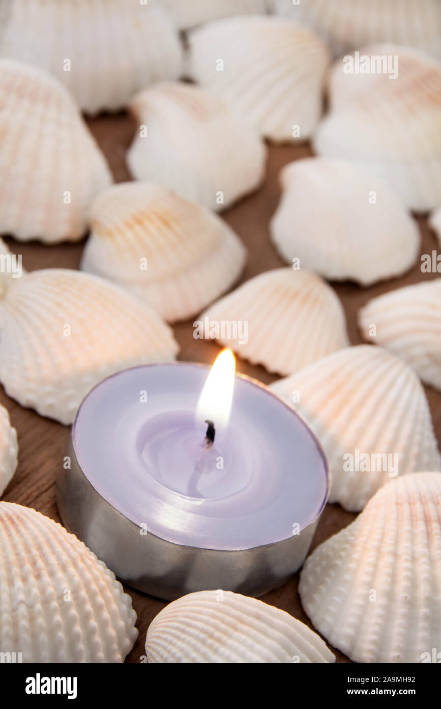 Mussels with candle as background Stock Photo
