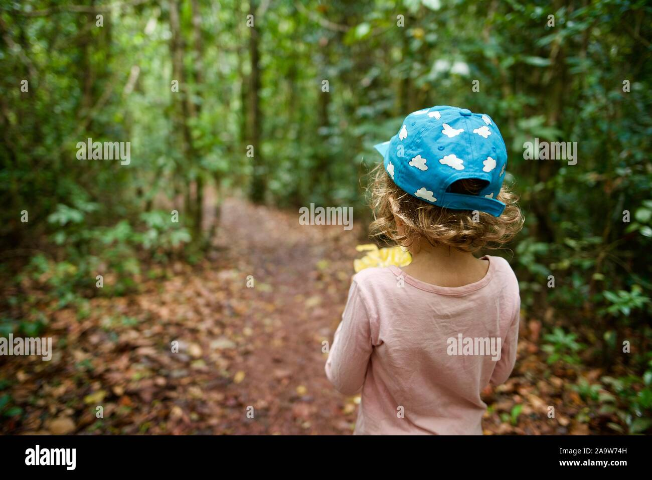 School age children walking on a forest path,  Honeyeater lookout hiking trail, Conway national park, Airlie Beach, Queensland, Australia Stock Photo