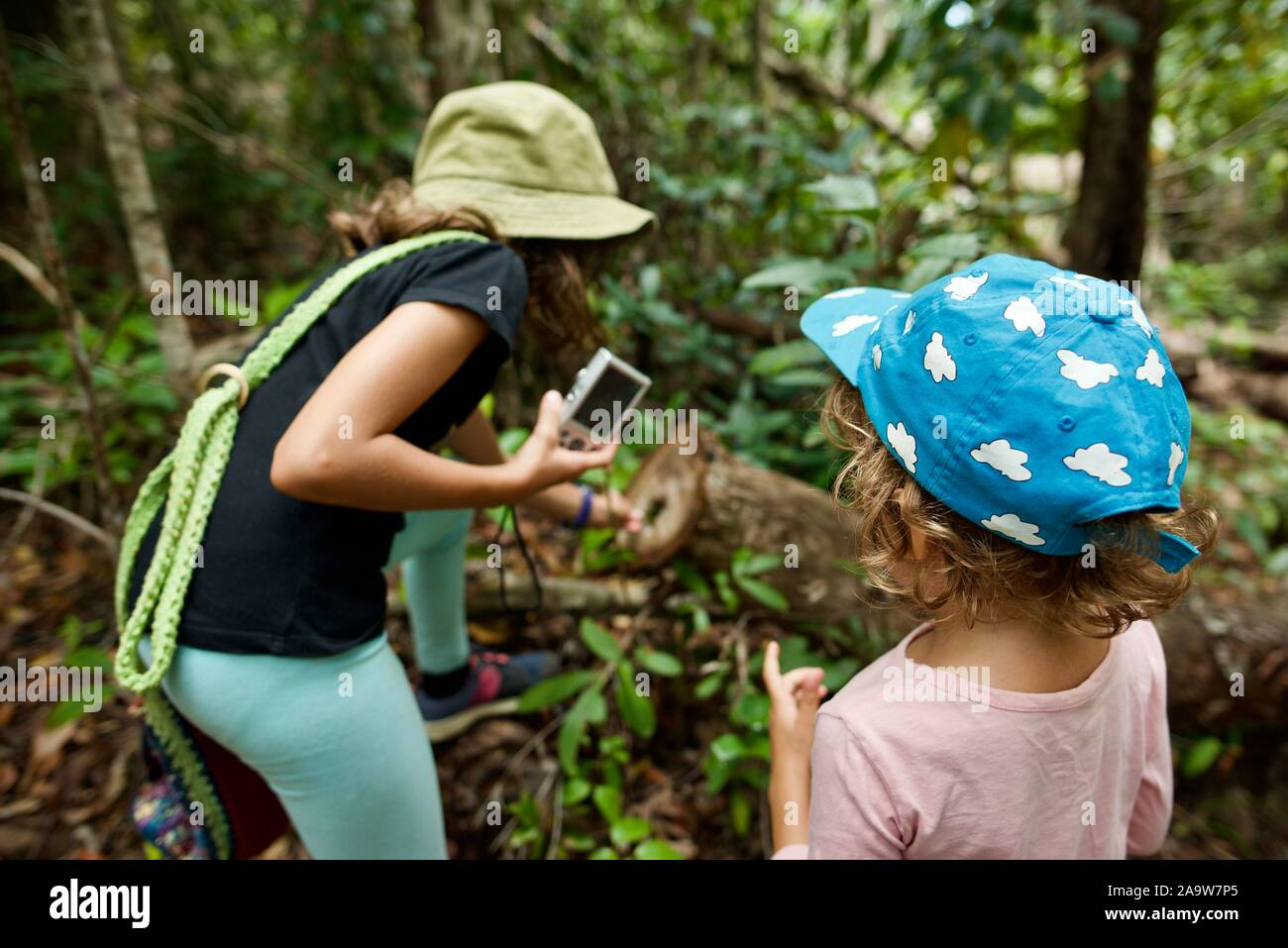 School age children exploring nature, Honeyeater lookout hiking trail, Conway national park, Airlie Beach, Queensland, Australia Stock Photo