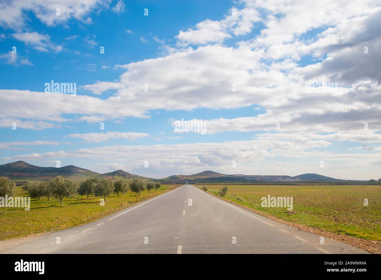 Byway and olive groves. Fuente el Fresno, Ciudad Real province, Castilla La Mancha, Spain. Stock Photo