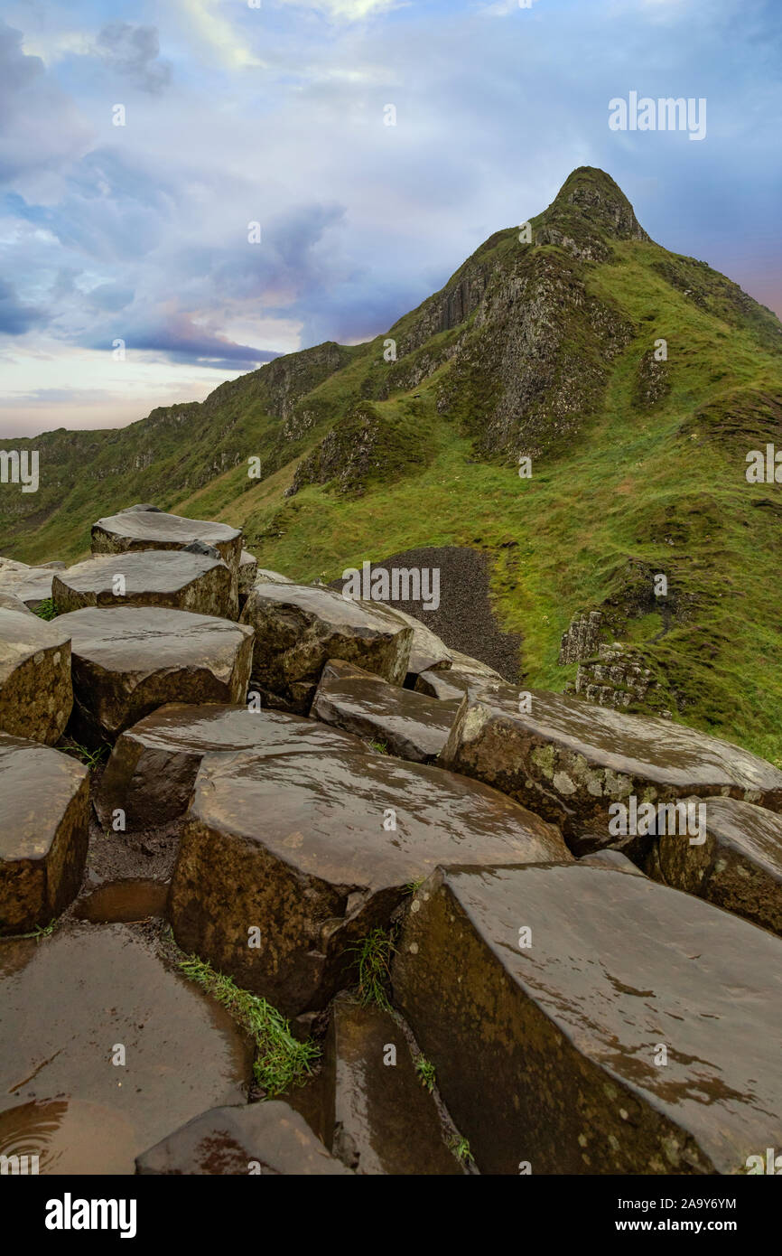 The Giant's Causeway at dawn on a sunny day with the famous basalt columns, the result of an ancient volcanic eruption. County Antrim on the north coa Stock Photo