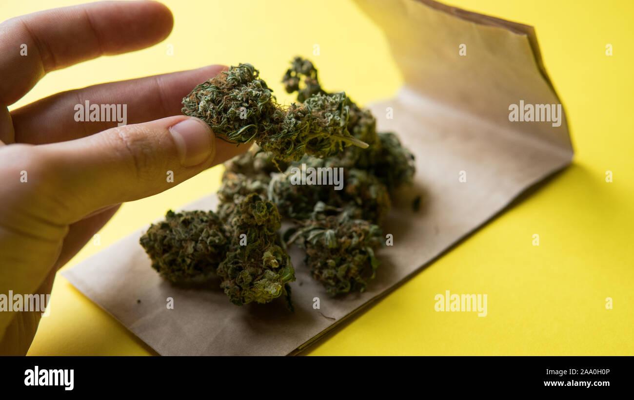 Продажа марихуаны бизнес конопля из тайланда