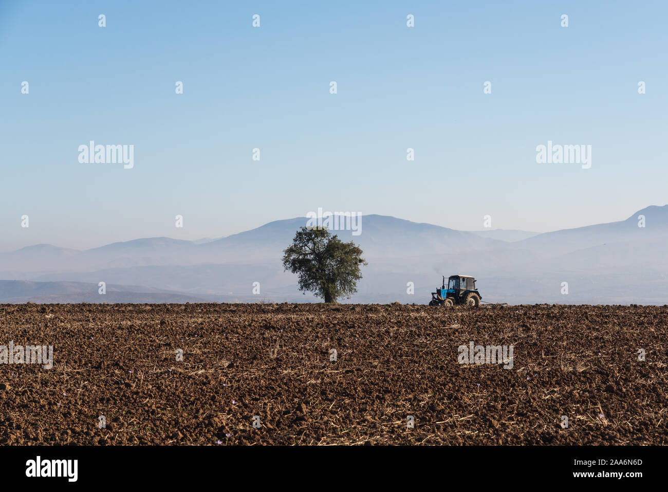 Tractor plows a farm field Stock Photo
