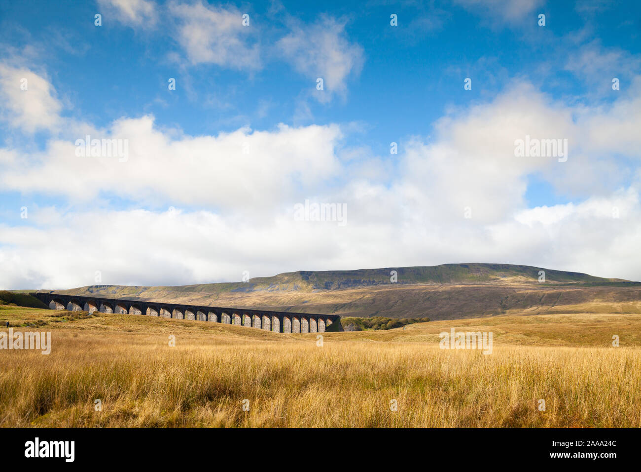Ribblehead Viaduct with Whernside Hill in the background in the Yorkshire Dales in England Stock Photo