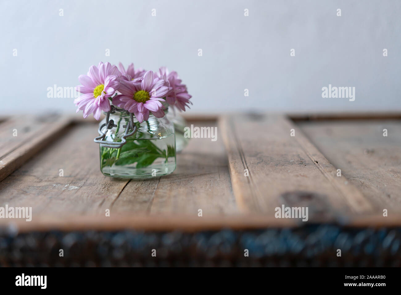 Pink asters in a small glass vase on a wooden shabby rustic cabinet in front of a white wall Stock Photo