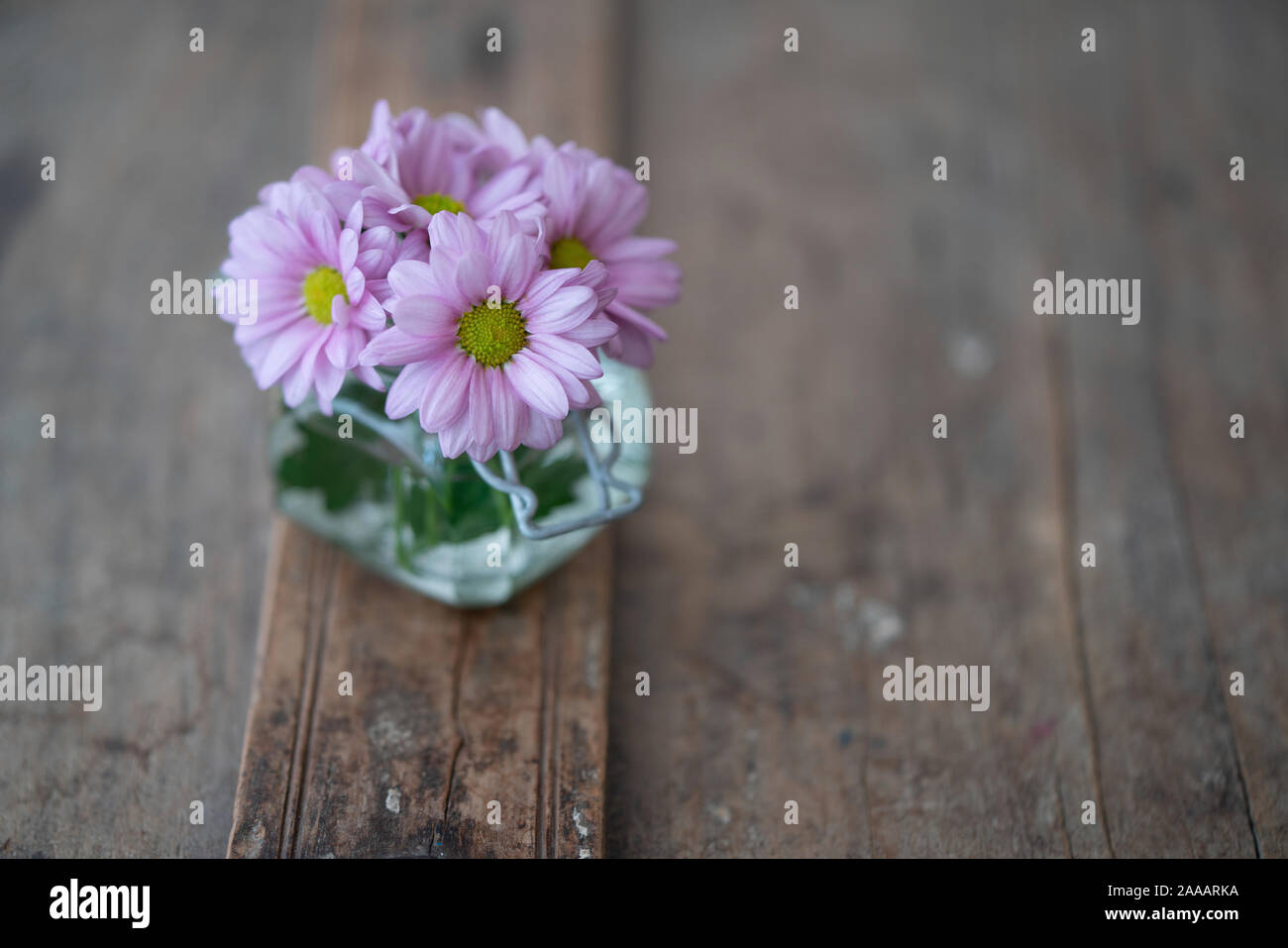 Pink asters in a small glass vase from above on a rustic shabby wooden furniture Stock Photo