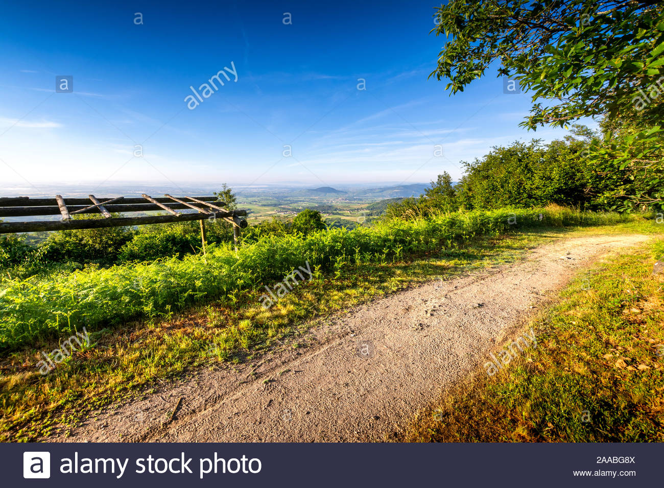 Hiking Path Chiroubles Terrace Beaujolais France Stock
