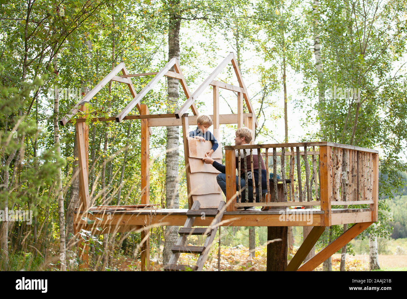Father And Son Building Treehouse Together In Garden Stock Photo