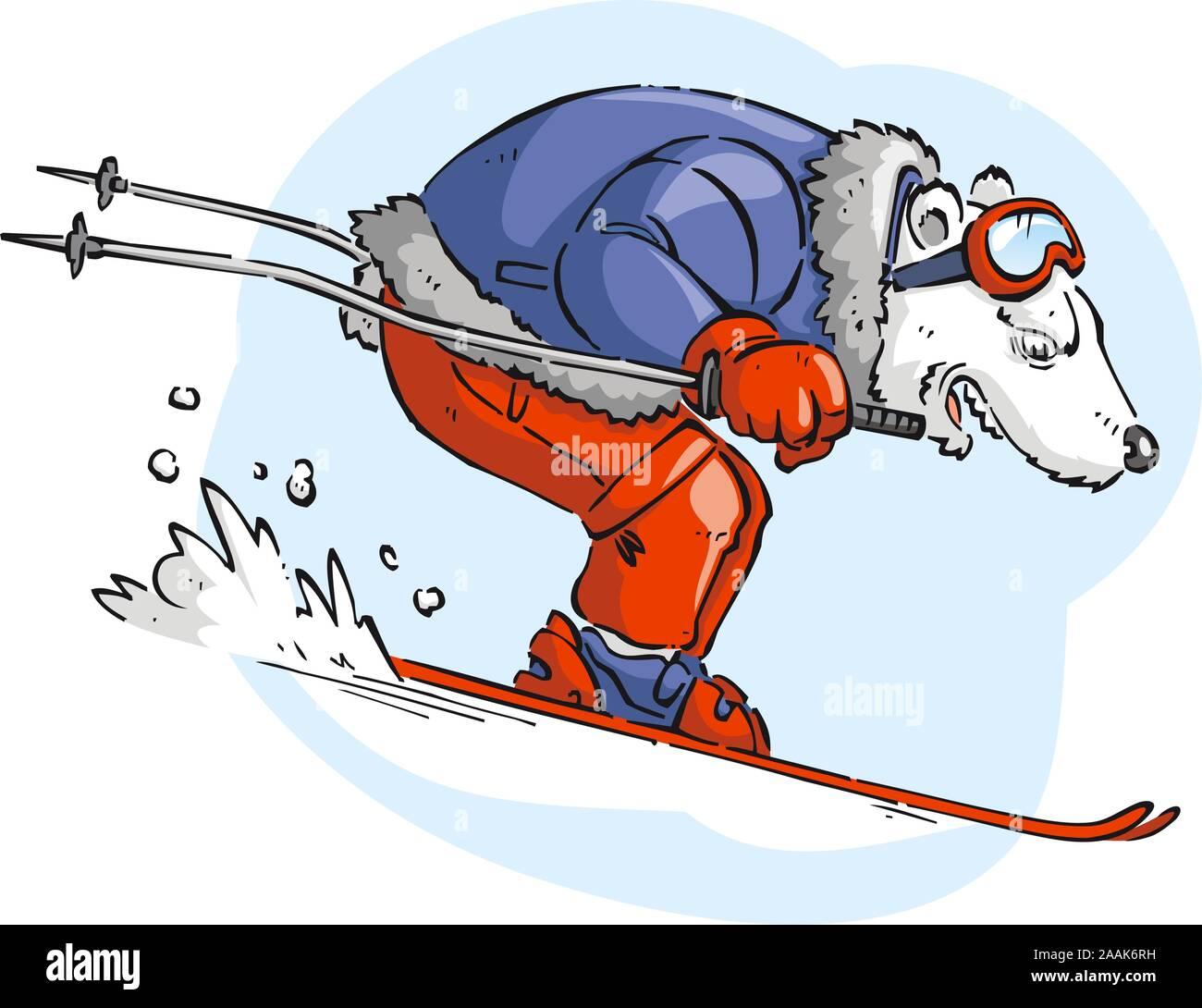 Polar bar skiing with blue jacket and red pants snow vector cartoon. Stock Vector