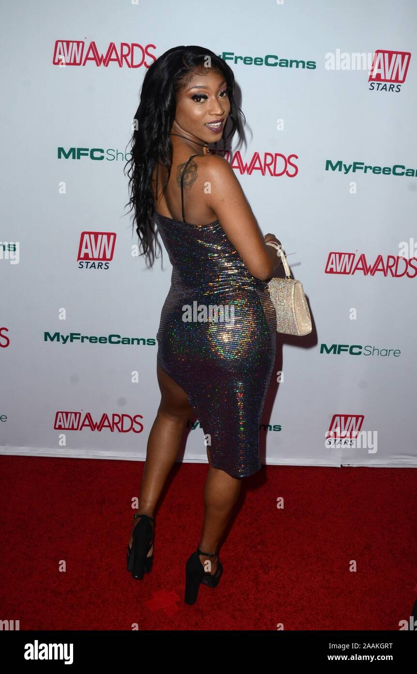 8th AVN Awards