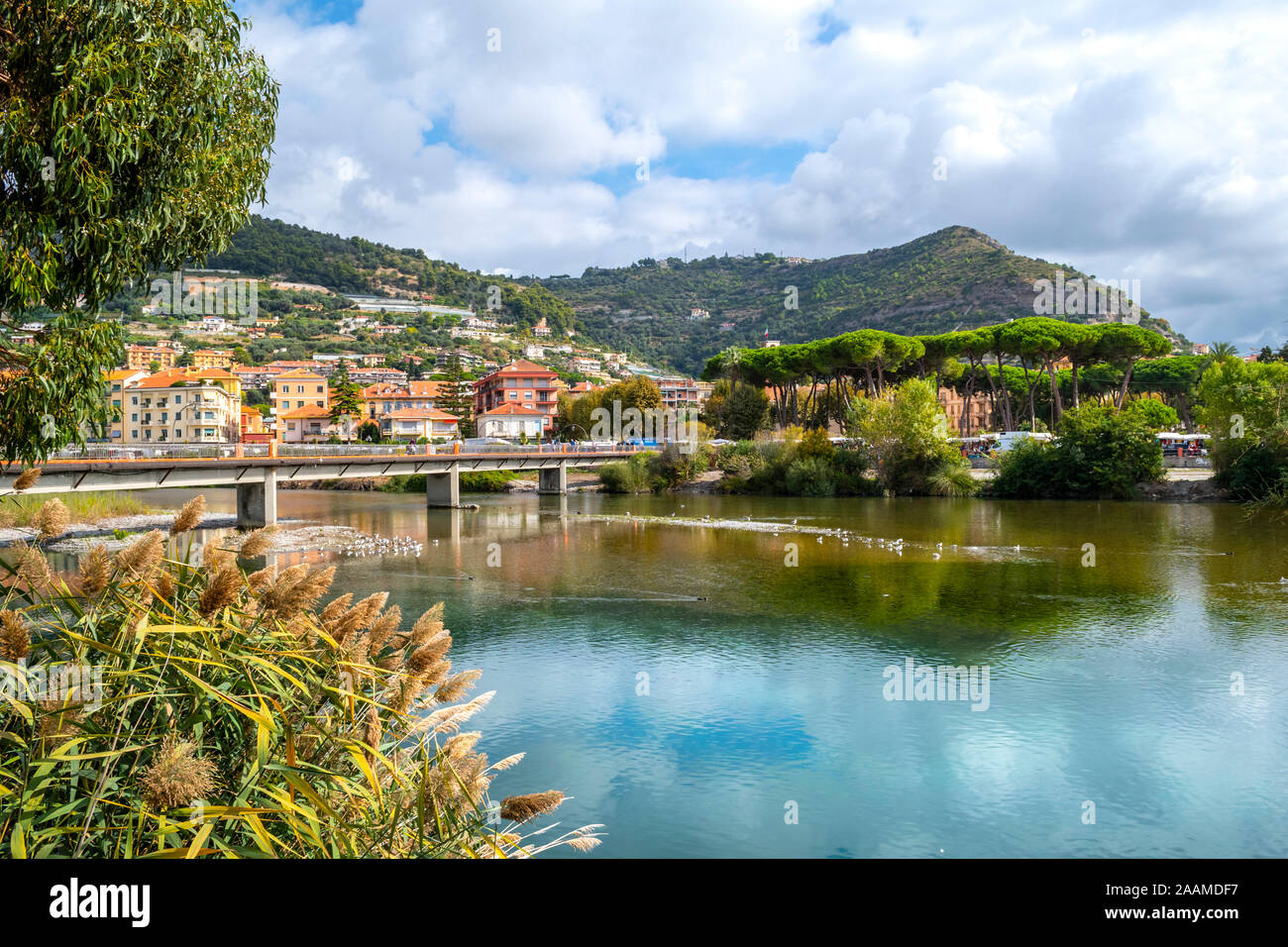 The bridge over the River Roia, filled with seagulls and ducks with the Italian village of Ventimiglia behind on the Italian Riviera. Stock Photo