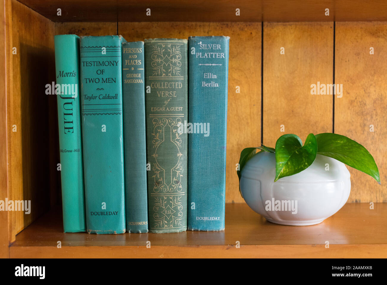 Vintage Blue And Green Books On Vintage Bookshelf With