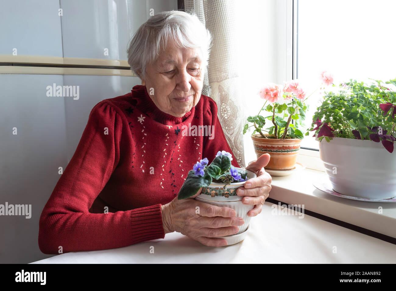 Portrait of smiling senior woman Stock Photo