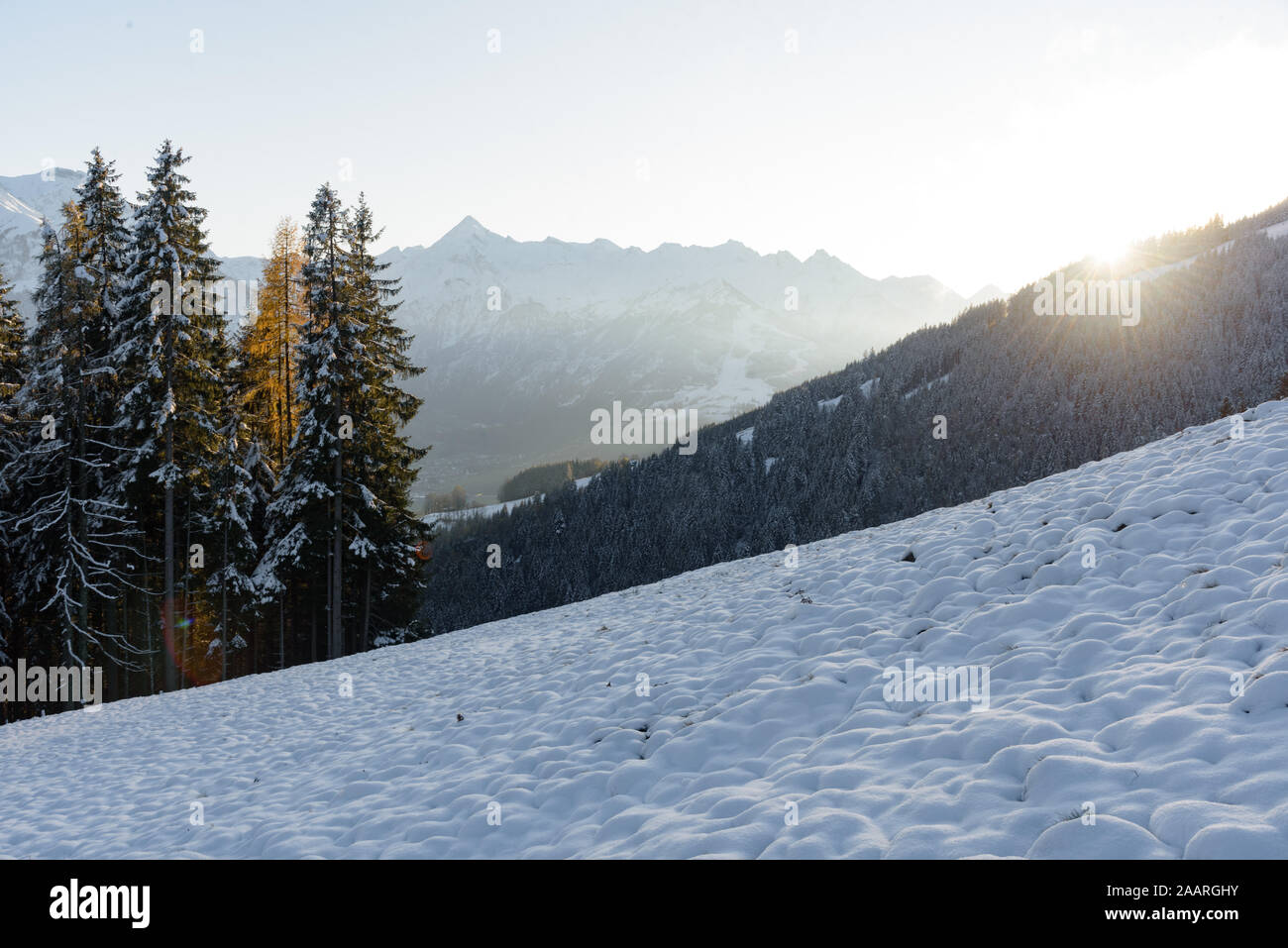 View of the mountain Kitzsteinhorn in winter with trees in the foreground. View from Keilberg, Schmittenhöhe, Zell am See, Salzburger Land, Austria. Stock Photo