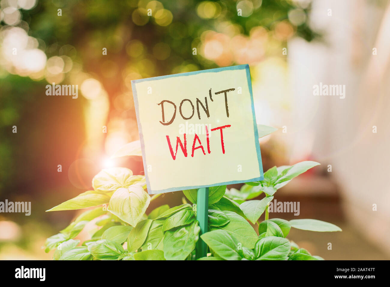 Conceptual hand writing showing Don T Wait. Concept meaning Take action now and do something for a purpose Act quickly Plain paper attached to stick a Stock Photo